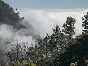 Descending the Pico do Areeiro, Madeira